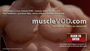 muscleVOD