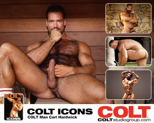 colt.2013.8.8